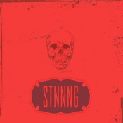STNNNG – Fake Fake (CD/LP)