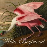 WhiteBoyfriend_cover500